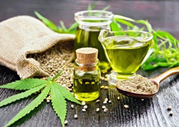 Le chanvre est une sous-espèce de l'espèce cannabis sativa